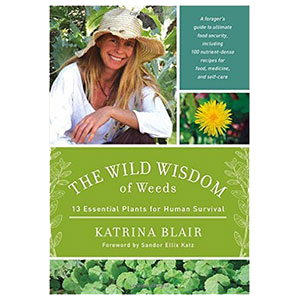 wild-wisdom-of-weeds-amazon