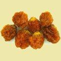 golden-berries-rfw