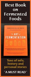 art-of-fermentation-book-banner
