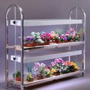 microgreens-growing-stand-2-tier-gm