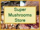 super-mushrooms-store-logo