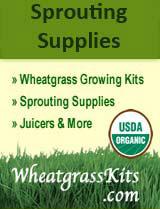wheatgrass-kits-banner-3