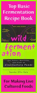 wild-fermentation-banner