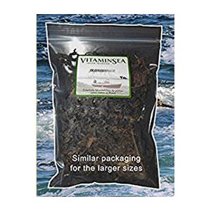 bladderwrack-seaweed-maine-coast-amazon