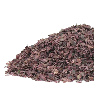 dulse-flakes-mountain-rose-herbs
