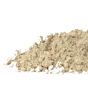 irish-moss-powder-mountain-rose-herbs