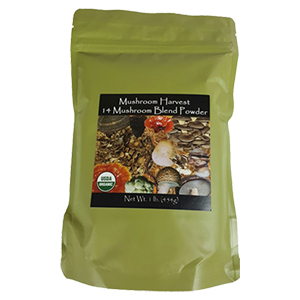 medicinal-mushroom-blend-harvest