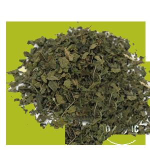 nettle-leaves-starwest