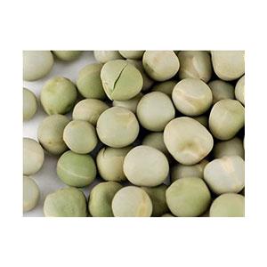peas-green-seeds-wheatgrass-kits