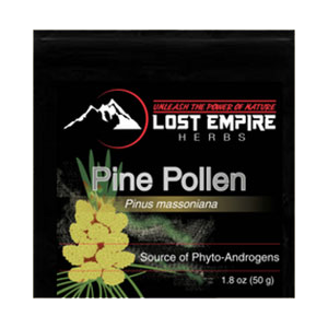pine-pollen-lost-empire