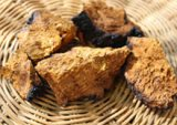 chaga-related-pages
