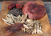 chinese-herbs-related-pages