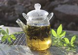 gynostemma-tea-benefits-page