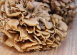 maitake-related-page