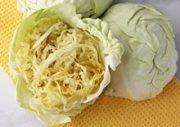 benefits-of-sauerkraut-related-page-index