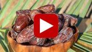 date-fruit-thumbnail