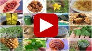 superfood-evolution-intro-video-thumbnail