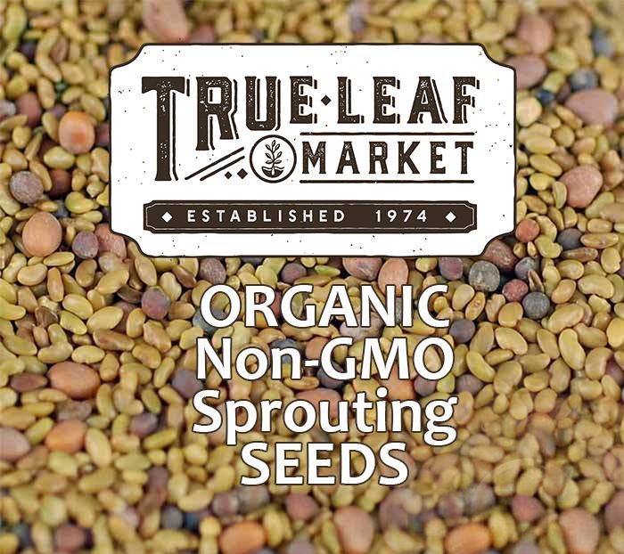 True Leaf Market Banner