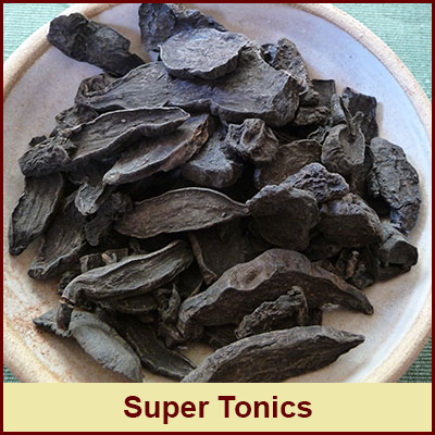 the-superfood-super-tonics-store