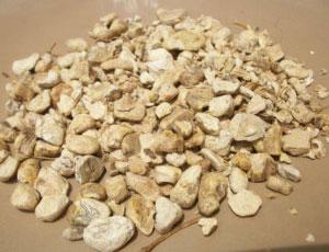 liver-herbs-dioscorea-root