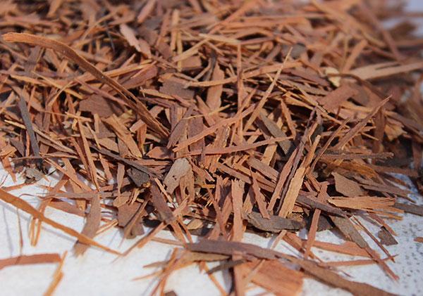 cleansing-herbs-pau-darco