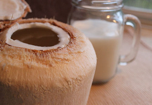 coconut-kefir-recipe-benefits