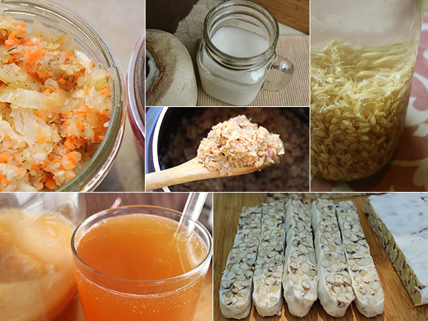 fermented-food-recipes-collage-recipes