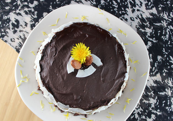 raw-chocolate-coconut-cream-pie
