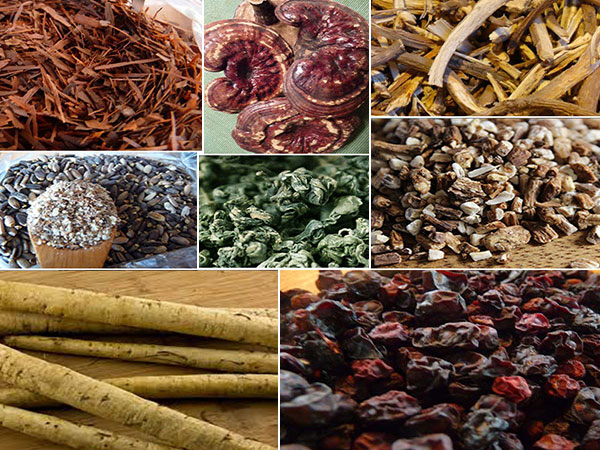 cleansing-herbs-collage-1