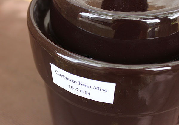 fermenting-miso-paste-crock-with-date