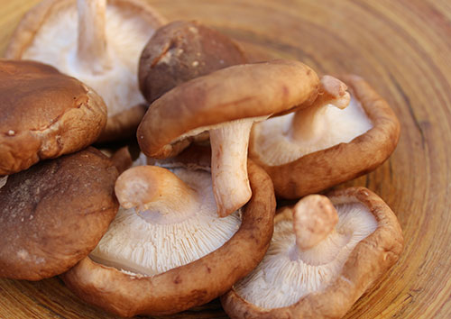 shiitake-mushrooms-benefits