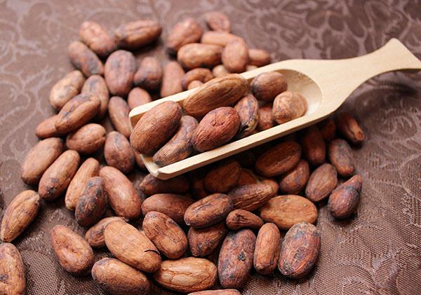 cacao-recipes-using-cacao-beans