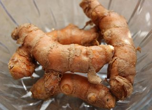 turmeric-root-fresh-rhizome
