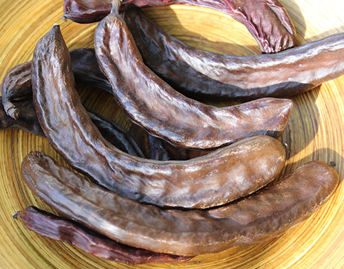 what-is-carob-benefits