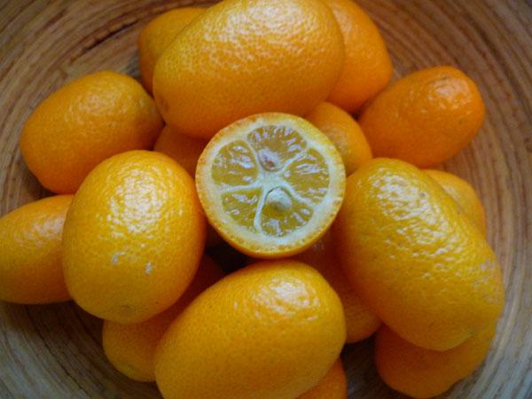 wild-kumquats