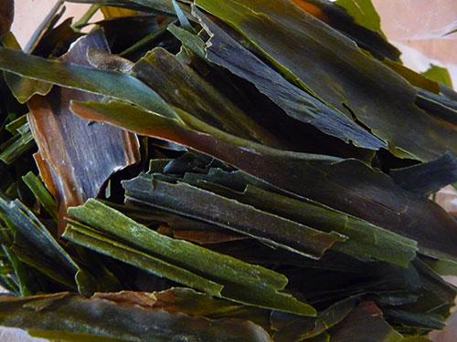 superfoods-list-kelp