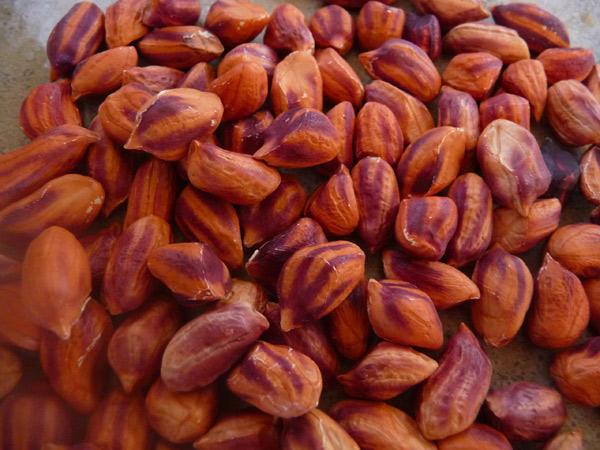 best-pad-thai-recipe-raw-jungle-peanuts