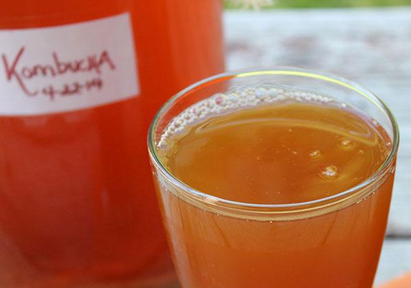 fermented-food-recipes-homemade-kombucha