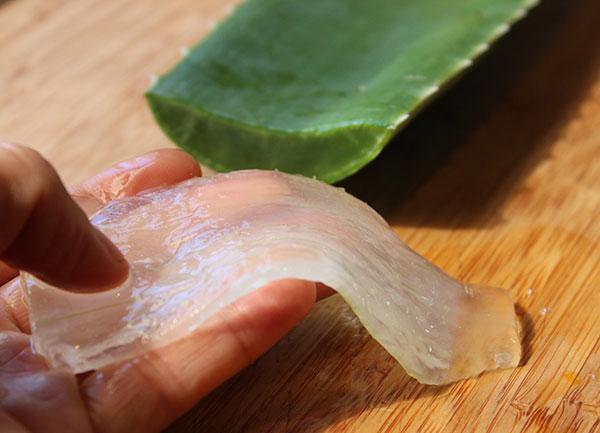superfoods-list-aloe-vera-gel