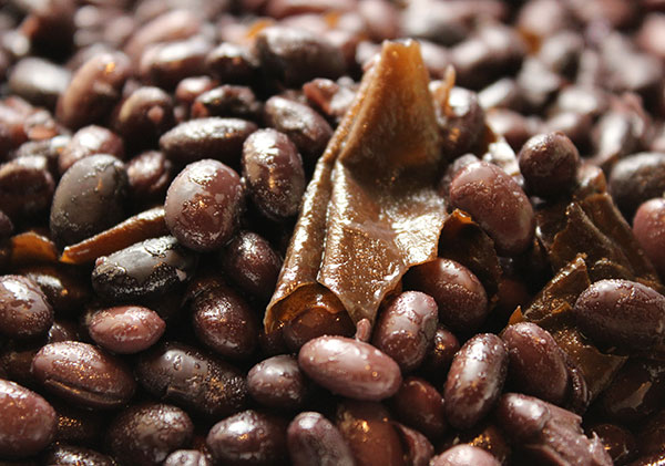 black-bean-tempeh-black-beans-kelp