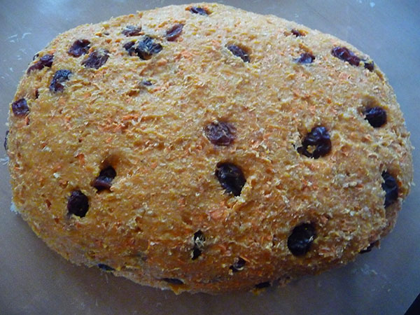 carrot-raisin-essene-bread-recipe