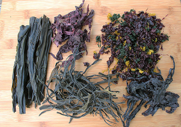 dried-seaweed-for-seaweed-salad