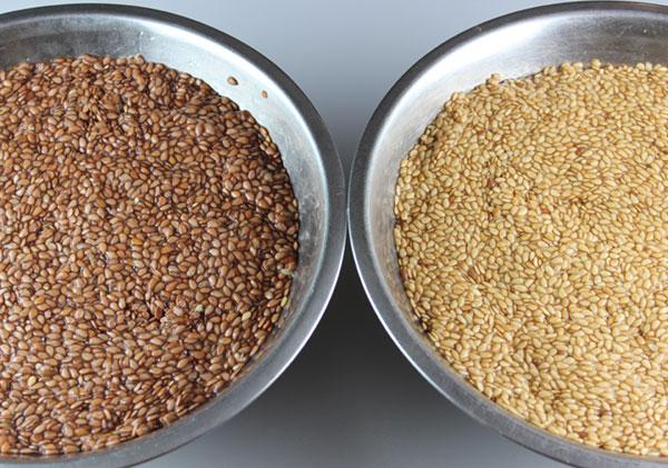 flaxseed-crackers-soaking-flax