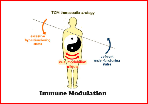 immune-modulation-double-directional