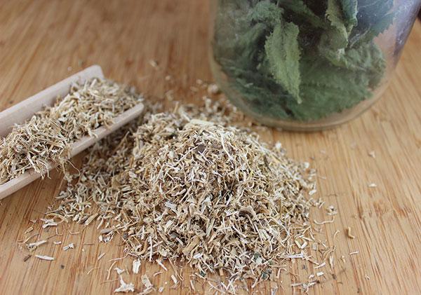 nettle-root-benefits