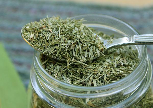 nutritive-herbal-tea-horsetail-herb