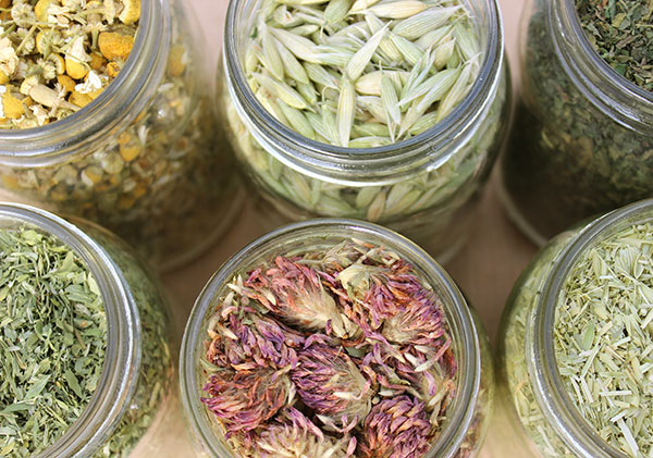 nutritive-herbal-tea-options