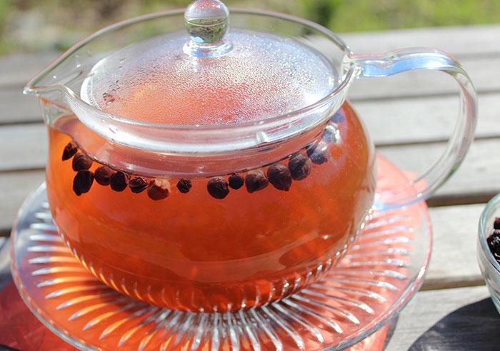 schizandra-berry-tea-tonic