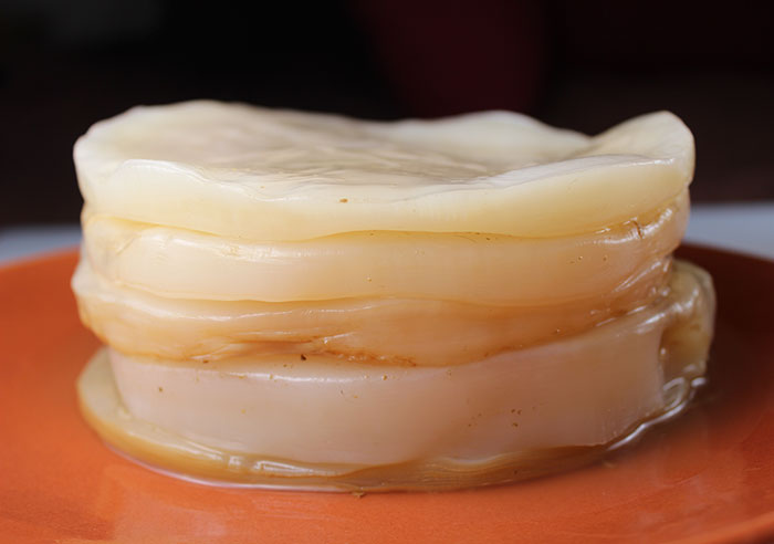 how-to-make-a-kombucha-scoby
