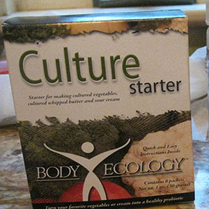Culture-Starter-Body-Ecology